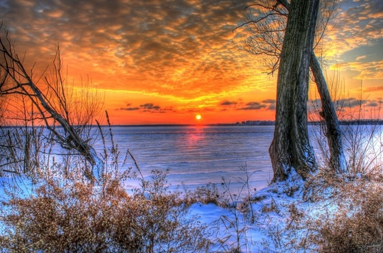 sunset over the ice between trees in madison wisconsin