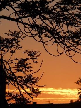 sunset sun golden