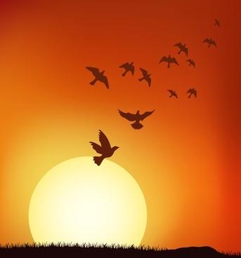 sunset vector under the birds