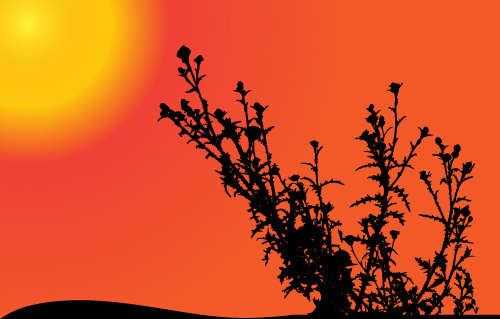 sunset with plant silhouette vector