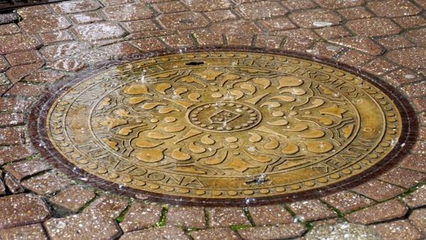 sunshine thunderstorm drain cover