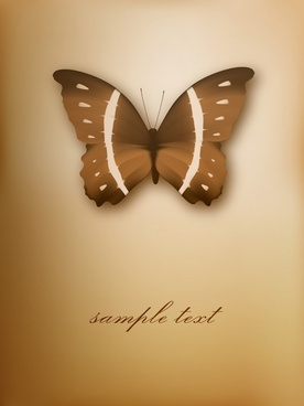 butterfly background modern 3d brown decor