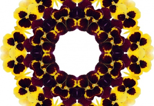 surreal pansy background