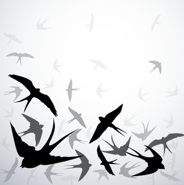 swallow silhouette with gray background vector