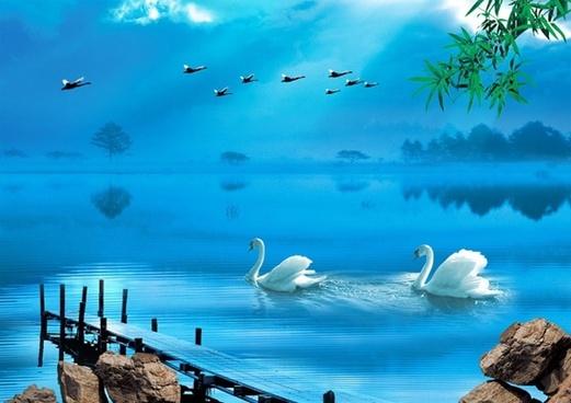 swan lake psd