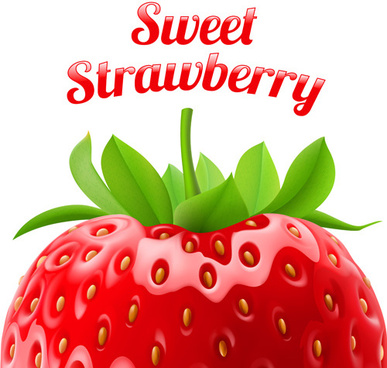 sweet strawberries design vector set