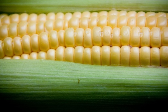 sweetcorn vegetable health