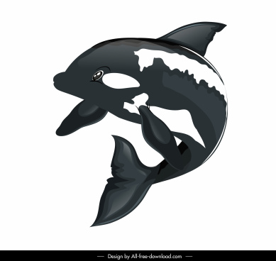 swimming dolphin icon motion ketch 3d design