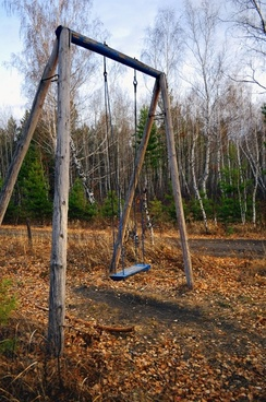 swing in the woods