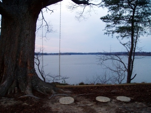 swing overlooking river