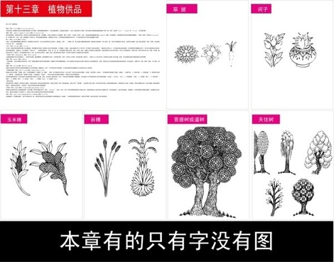 symbols of tibetan buddhism and the figure of 13 objects plant offerings vector