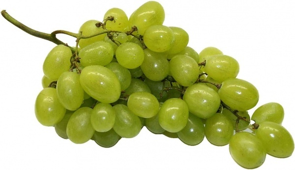 table grapes grapes fruit
