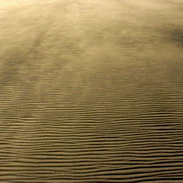 tan rippled sand