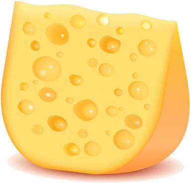 tasty cheese vector illustration