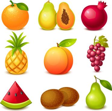 tasty fruits shiny vector