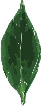 Tea Leaf clip art