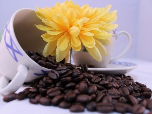 teacup coffee flower