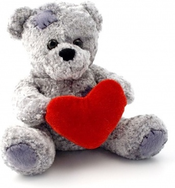 teddy bear animal