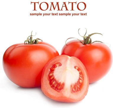 tempting tomato 05 hd pictures