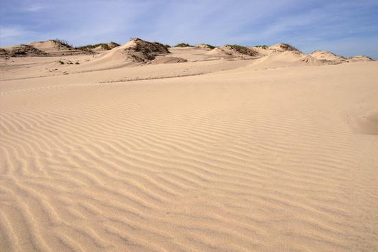 texas sand dunes