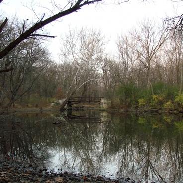 the bridge over the creek