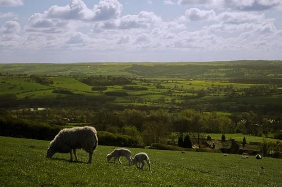 the english landscape