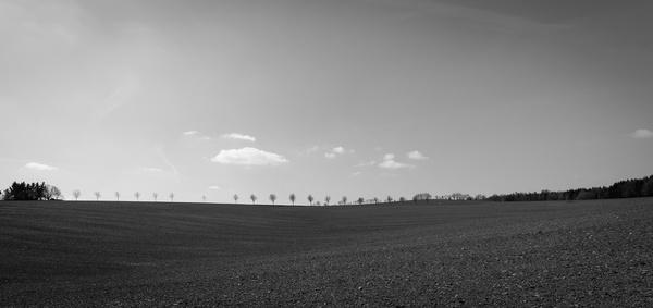 the field ii