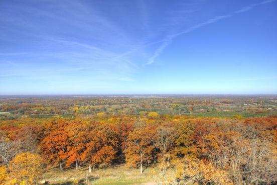 the forest of kettle moraine at lapham peak state park wisconsin