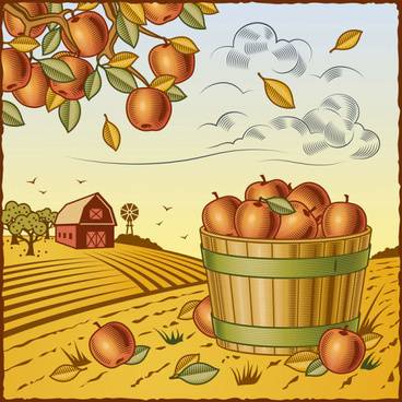 the harvest season cartoon vector