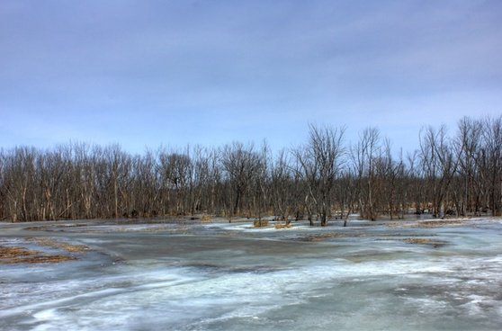 the icy backwaters on the great river trail wisconsin