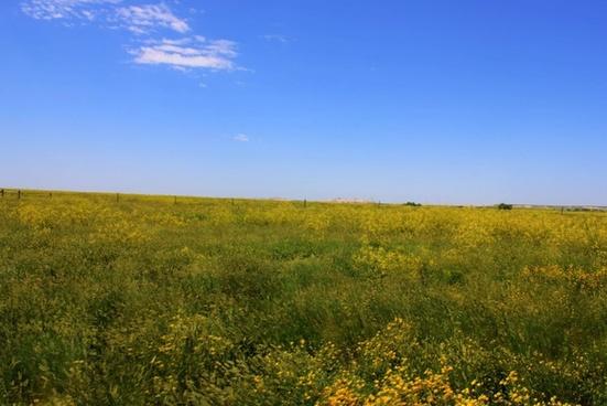 the open prairie at badlands national park south dakota