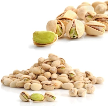 the pistachio hd photo 1