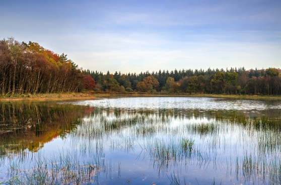 the stephen king lake