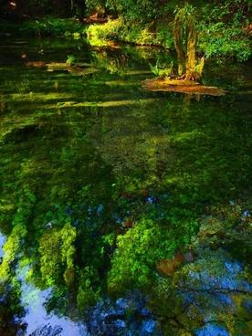 therivers ubuyama kumamoto water