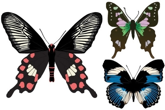 Kad Kahwin Buterfly Free Vector Download 9 Free Vector For Commercial Use Format Ai Eps Cdr Svg Vector Illustration Graphic Art Design Sort By Recommend First
