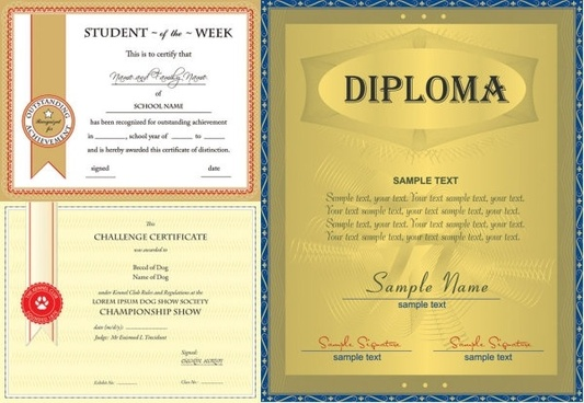 three vector design certificate