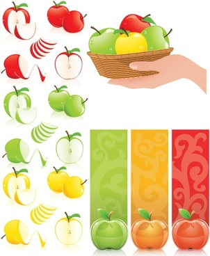 threecolor apple vector
