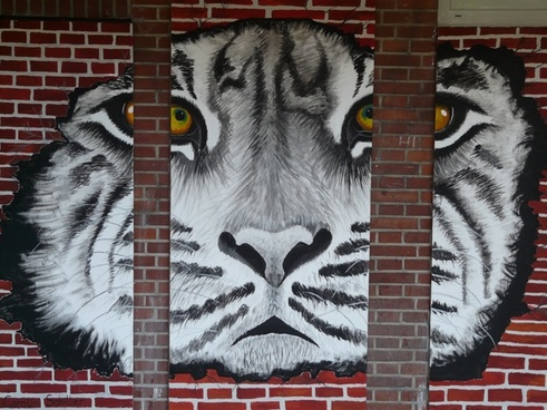 tiger art painting