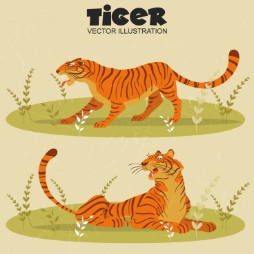 tiger drawing colored classical design