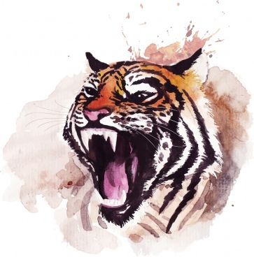 tiger drawing grunge watercolor handdrawn decor