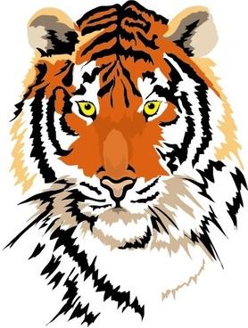 tiger image 01 vector