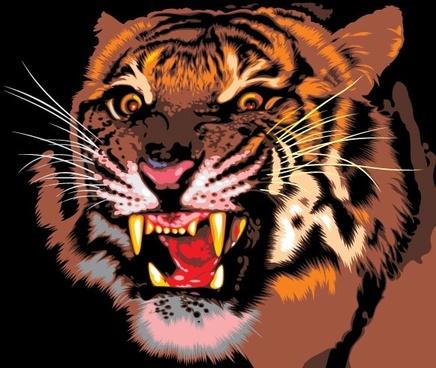 tiger image 09 vector