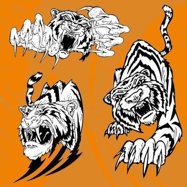 tiger image 11 vector