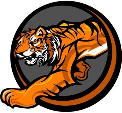 tiger image 22 vector