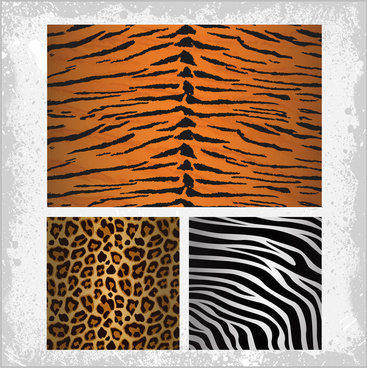 tiger zebra leopards skin pattern