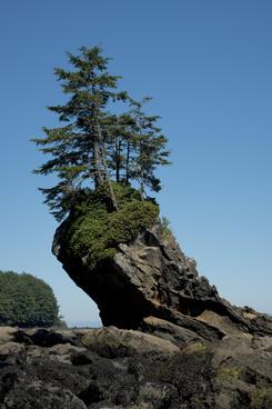 tilted rock