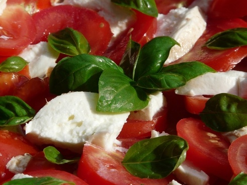 tomato and mozzarella salad basil tomatoes