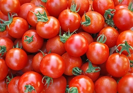 tomato background picture