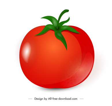 tomato fruit icon shiny red green decor