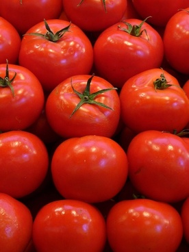 tomatoes vegetable red